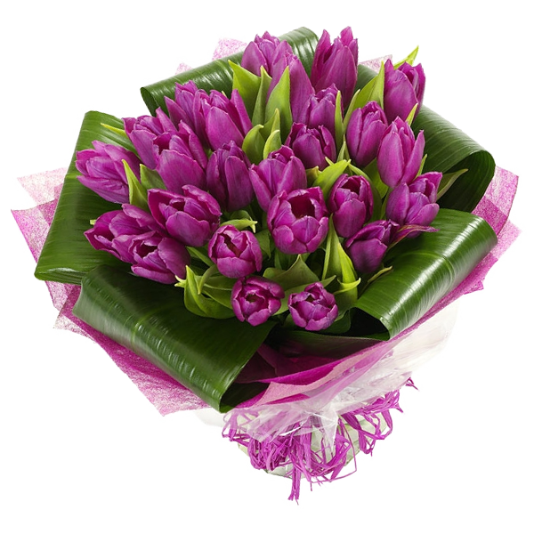 Букет из 25 тюльпанов, A bouquet of 25 tulips