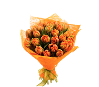 Букет из 27 тюльпанов, A bouquet of 27 tulips