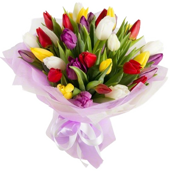 Букет из 29 тюльпанов, A bouquet of 29 tulips