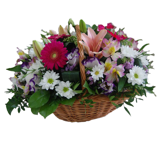 a basket of flowers Aurora