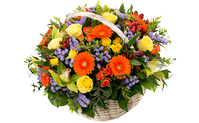 A basket of flowers beautiful stranger