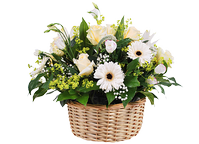 A basket of flowers spring waltz
