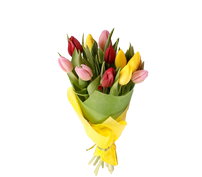 Букет из 11 тюльпанов, Bouquet of 11 tulips