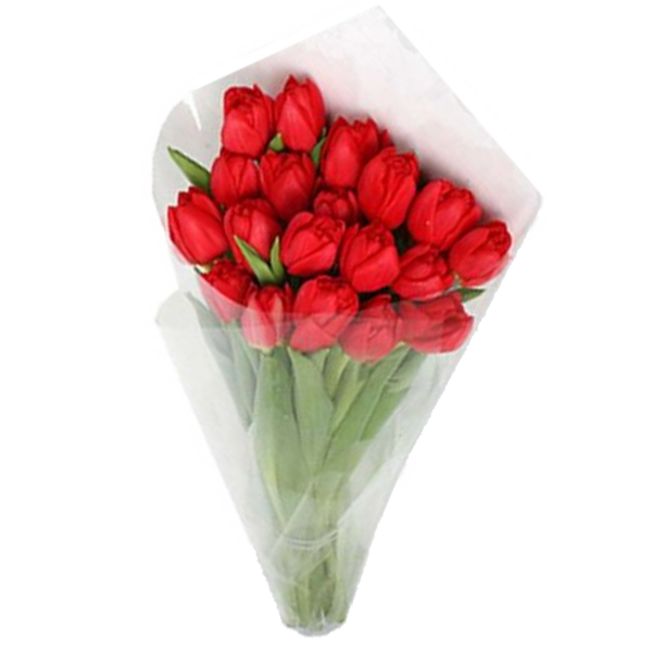 Букет из 19 тюльпанов, Bouquet of 19 tulips