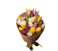 Букет из 23 тюльпанов, Bouquet of 23 tulips