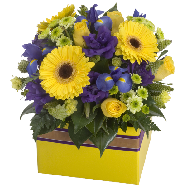 flowers in a box No. 14