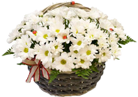 A basket of flowers crystal lights